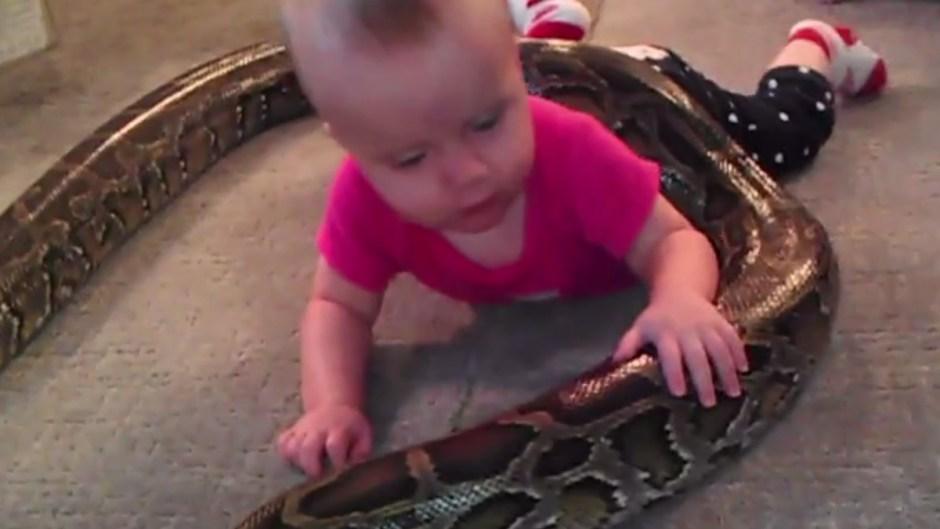 snake-baby-playing