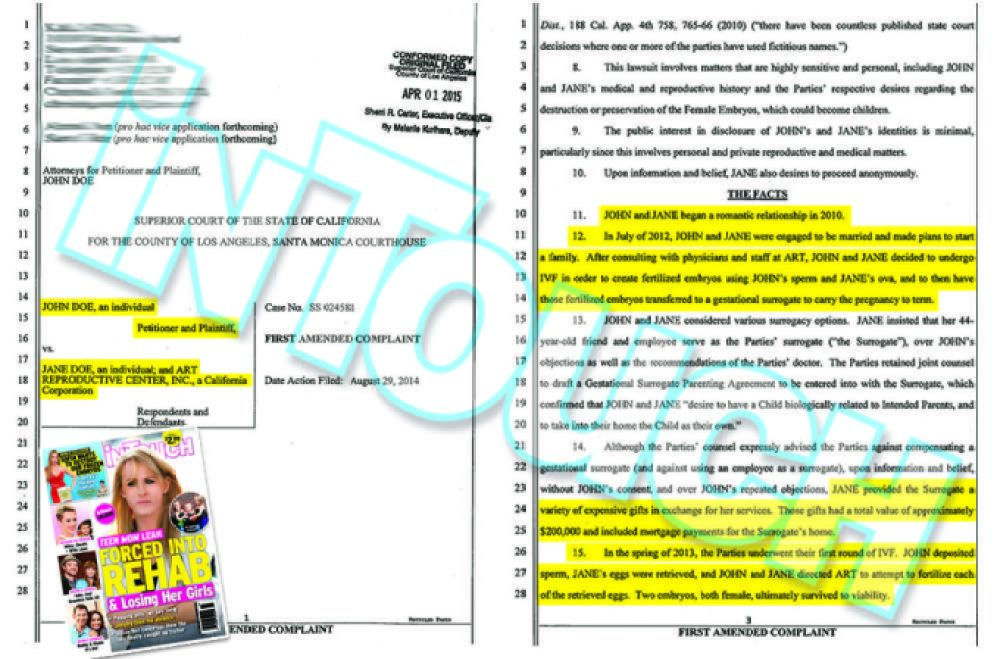 sofia vergara nick loeb documents