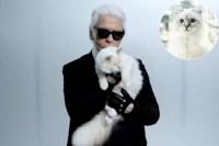 karl-lagerfeld-choupette-richest-cats