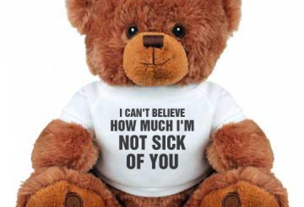 cute valentine's day bear