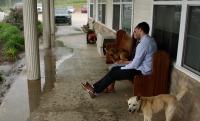 duggar-family-dogs