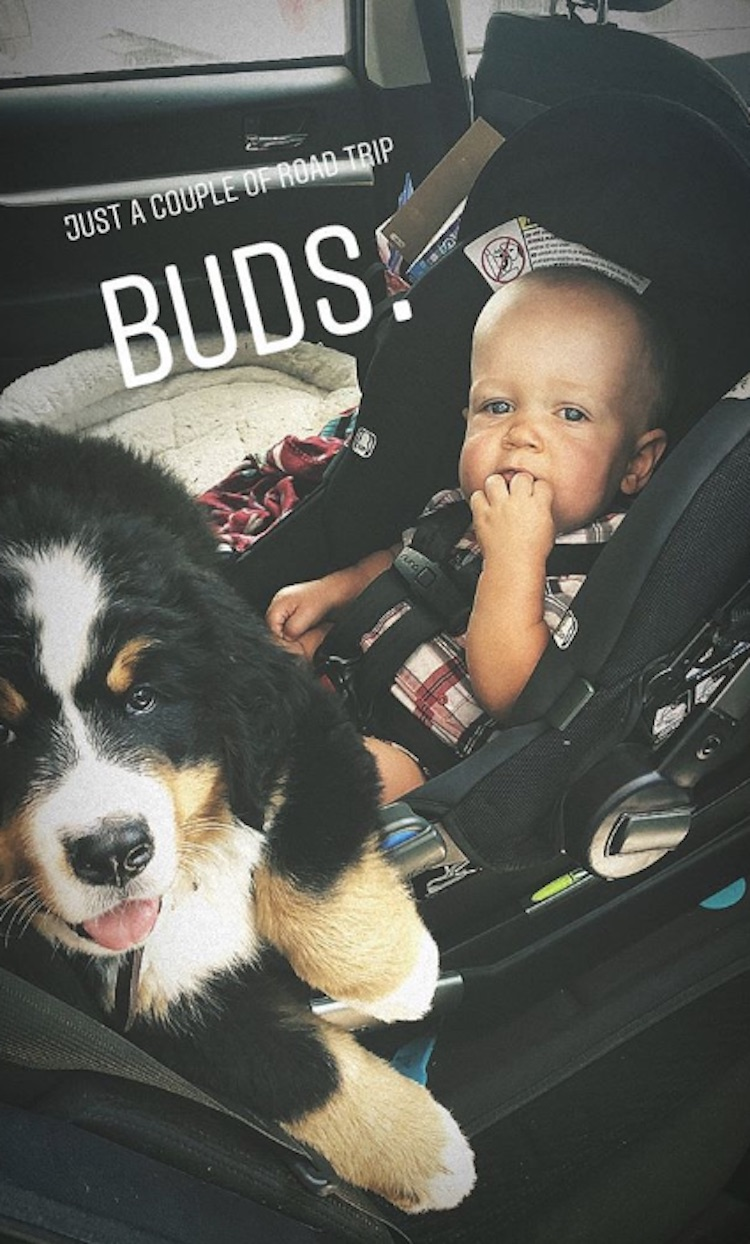 jackson roloff and murphy