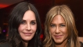 jennifer aniston courteney cox emergency landing
