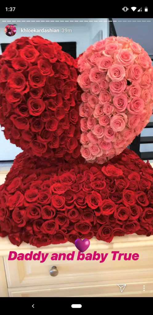 Stars Celebrating Valentine's Day: See All of the Over-the-Top Romantic Displays