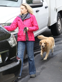 Even the Family Dog at Lori Loughlin Home Looks Depressed as It's Picked Up by Dog Walker