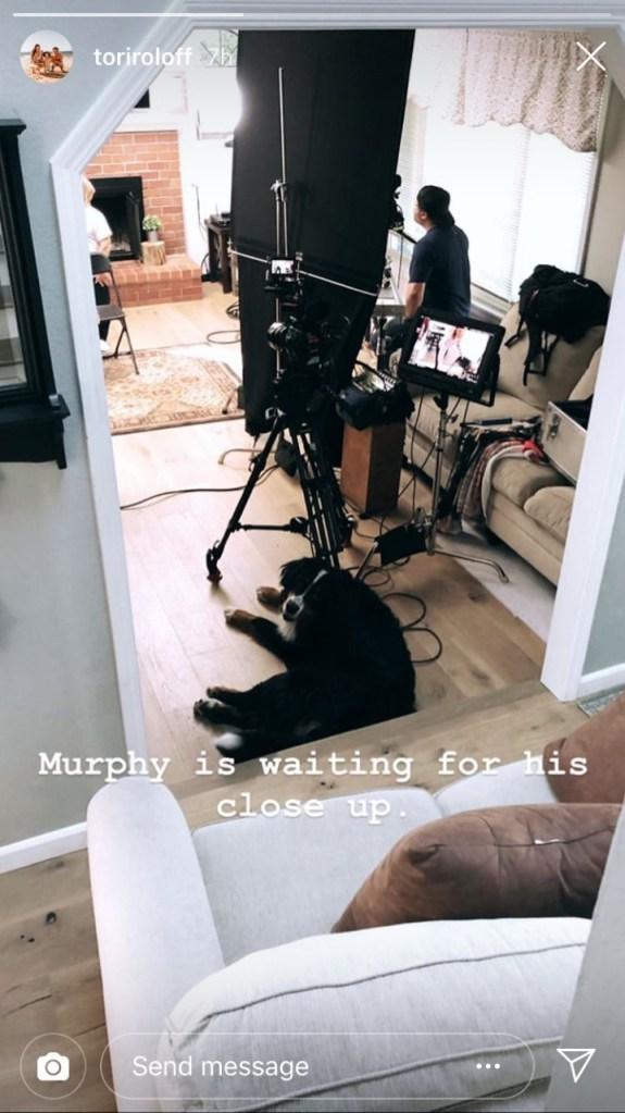 Murphy LPBW