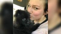 Rain Brown Kisses New Puppy