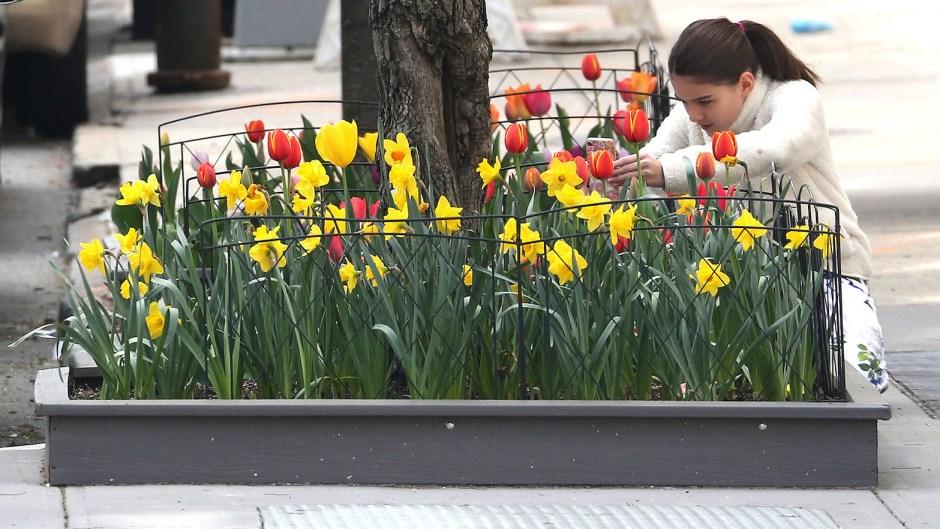 Suri Cruise Takes Pics of Flowers