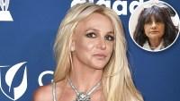 Britney Spears Mother Lynne Judge Mental Health Battle