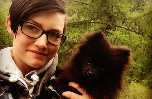 Rain Brown and Pomeranian Puppy Jakson