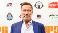 arnold schwarzenegger attacked kicked