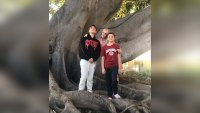 Britney Spears Sons Look So Big Posing On A Tree
