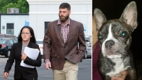 David Eason Dog Killing Jenelle Denies Nugget Shot