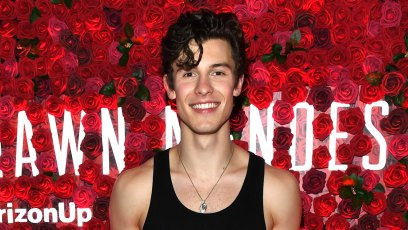 Shawn Mendes Straight-Up Walked Off Stage When Asked About Camila Cabello and People Are Pissed