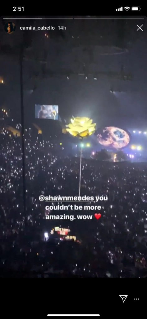camila cabello gushes over shawn mendes at his concert