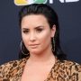 Demi Lovato Doing Great 27th Birthday