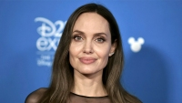 angelina jolie stuns in a black knee length dress with a high thigh slit and a sheer neckline and sleeves at the d23 red carpet