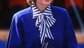 Princess Diana case solved