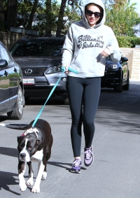 Miley Cyrus Is Single Again, But She'll Always Have Her Dogs to Lean On! Meet All Her Pups