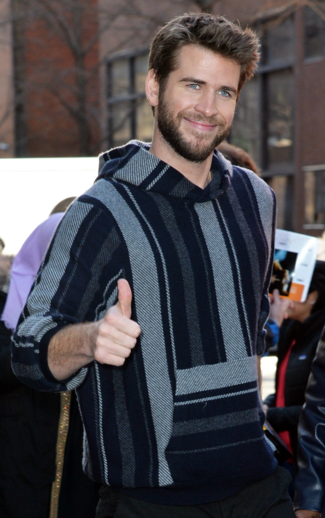 Liam Hemsworth Thumbs Up Who is Maddison Brown explainer