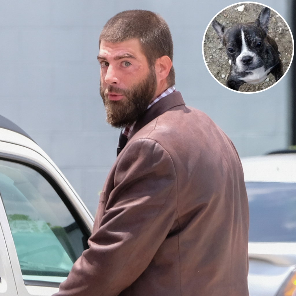 In-Set Photo of Nugget the French bulldog Over Photo of David Eason