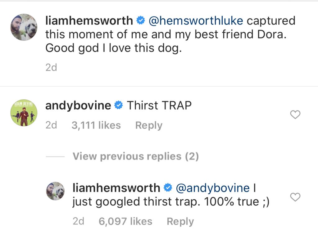 Adam Devine Calls Liam Hemsworth a Thirst Trap on Instagram