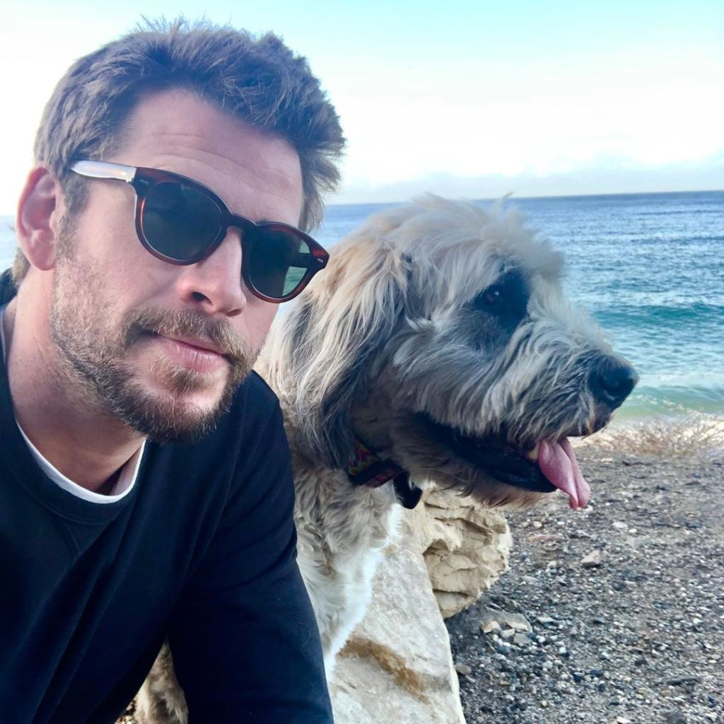 Liam Hemsworth With His Dog at the Beach