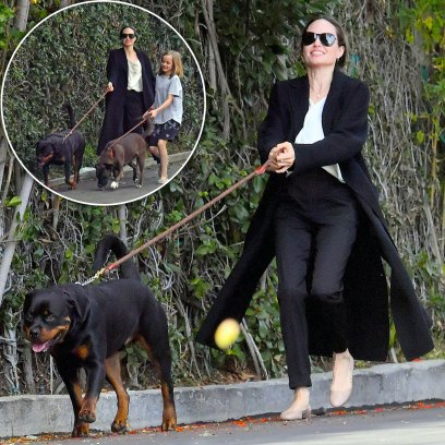 Angelina Jolie and Daughter Vivienne Get Dragged By Their Dogs As They Leave the Groomer in L.A.