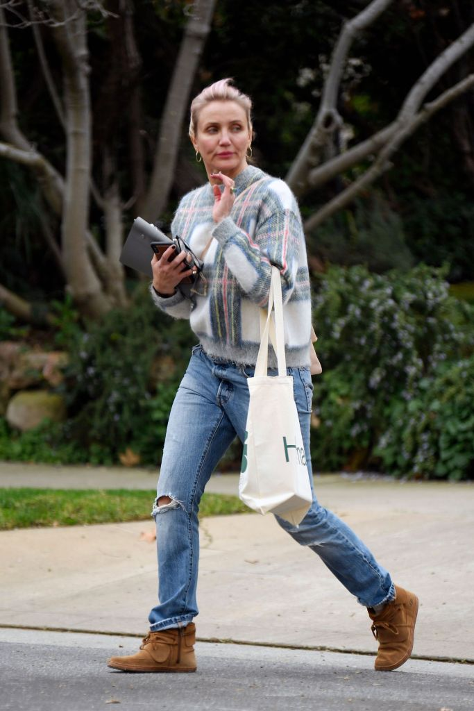 Cameron Diaz Spotted for the First Time Since Welcoming Baby Girl Raddix