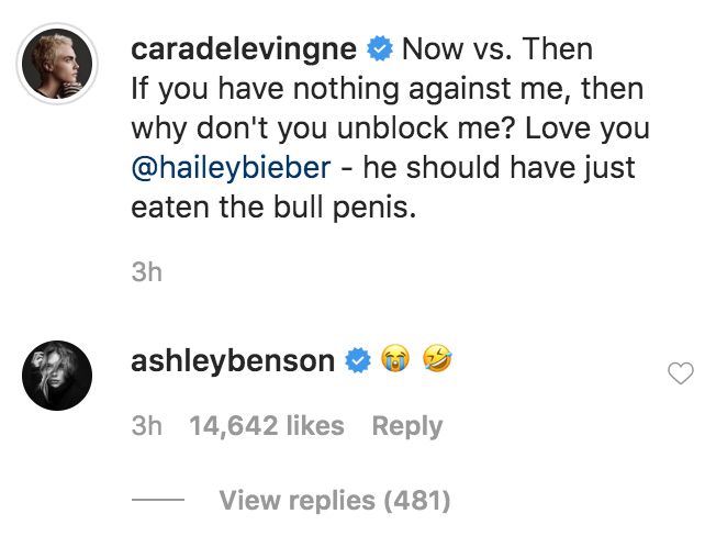 Ashley Benson Reacts to Cara Calling Out Justin