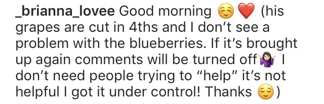 Brianna Jaramillo Claps Back at Mom-Shamers on Instagram