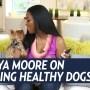 Kenya Moore Healthy Dogs