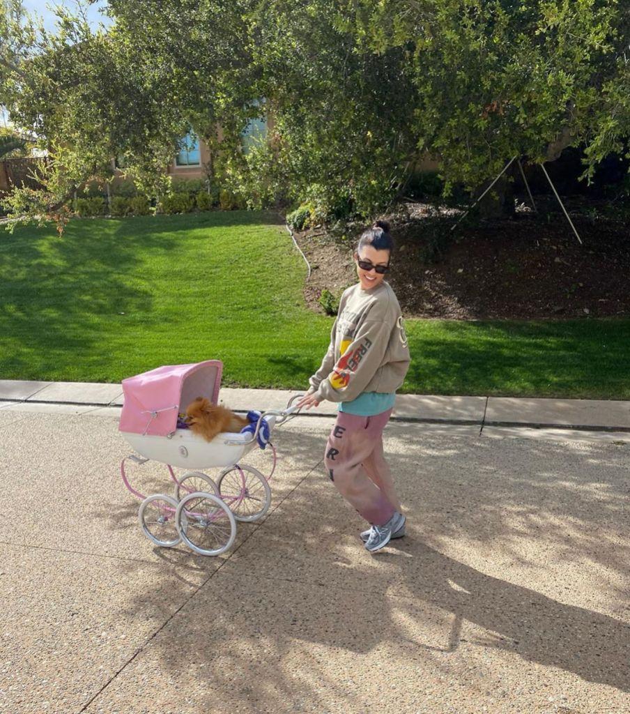 Kourtney-kardashian-stroller-feature