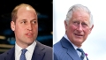 Prince William is 'Concerned' About Dad Prince Charles' Coronavirus Diagnosis: 'He's Willing to Step Up'