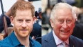 rince-harry-prince-william-feature