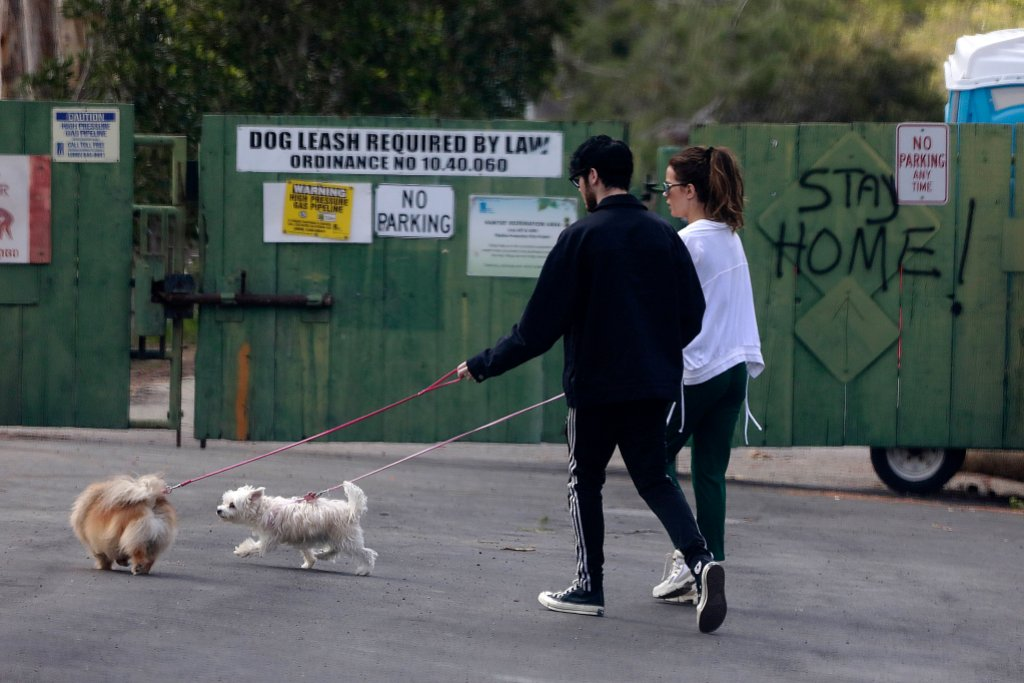 Kate Beckinsale and Goody Grace Walk Dogs
