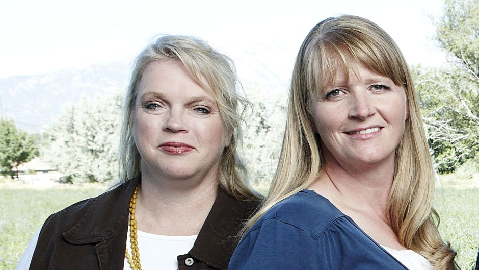 Sister Wives Janelle and Christine Brown Reveal Perks of Coparenting Arrangement