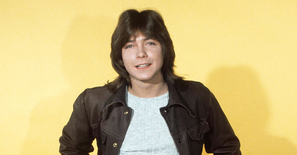 David Cassidy's Death Examined in 'Autopsy… The Last Hours Of'