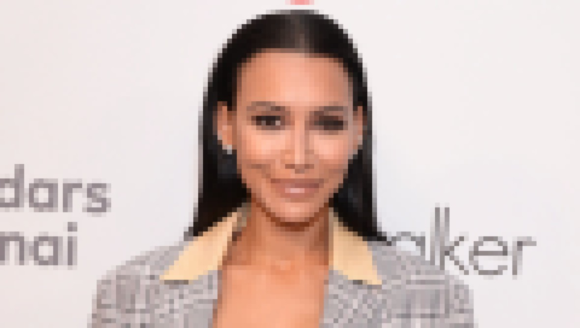 Naya Rivera Wears Plaid Blazer White Crop Top and Leather Pants