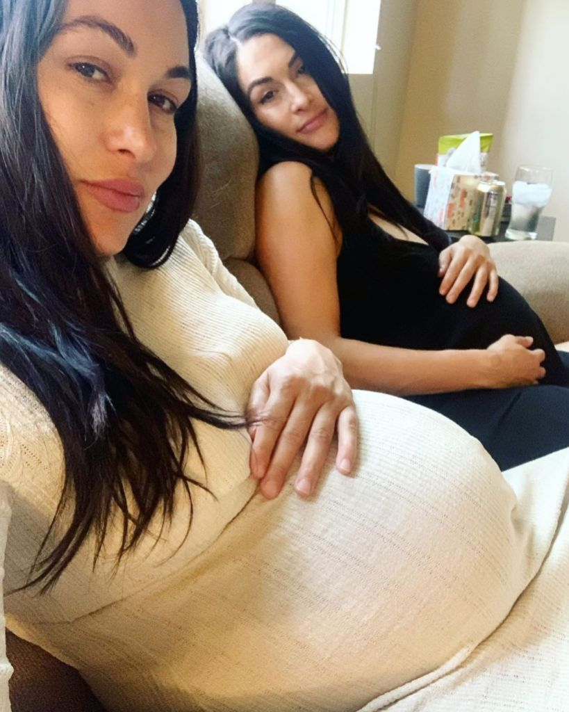 Nikki and Brie Bella Baby Bumps