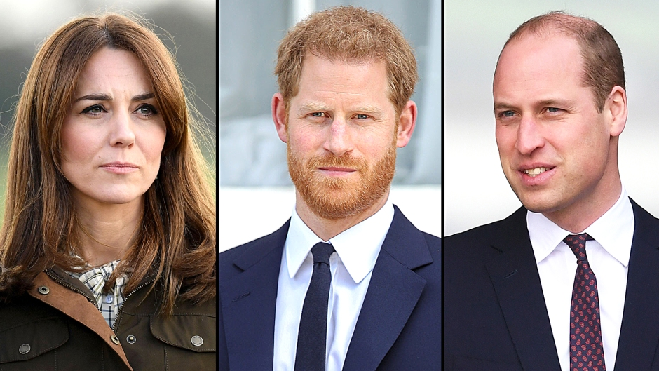 Kate Middleton Did Little Help Prince Harry Prince William Make Amends