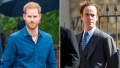 Prince Harry's Friend Tom Didn't 'Trust His Judgment' With Meghan Markle — 'It Hurt'