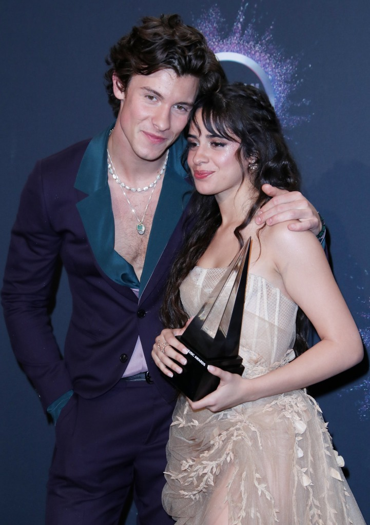 Shawn Mendes and Camila Cabello Are Taking Some Time Apart