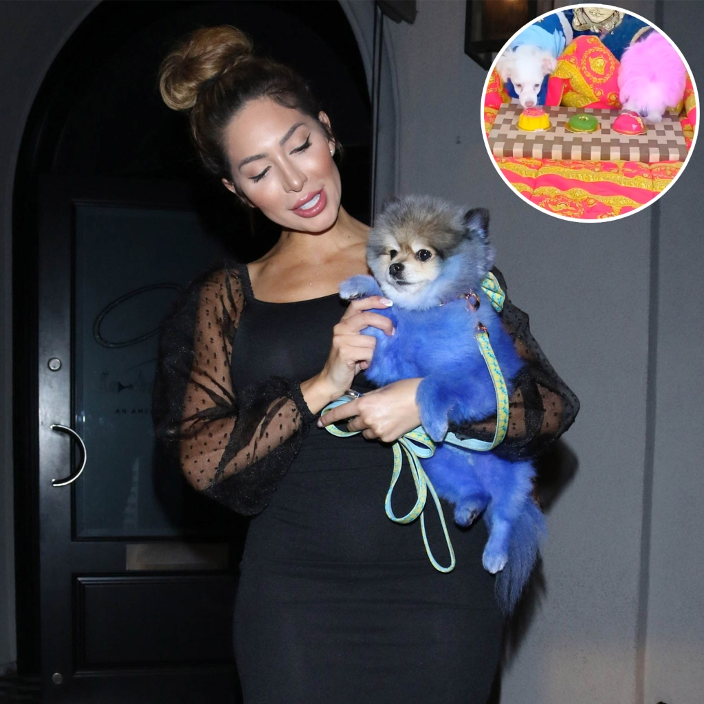 Farrah Abraham Carrying Dog With Inset Photo of Dogs Eating Cake