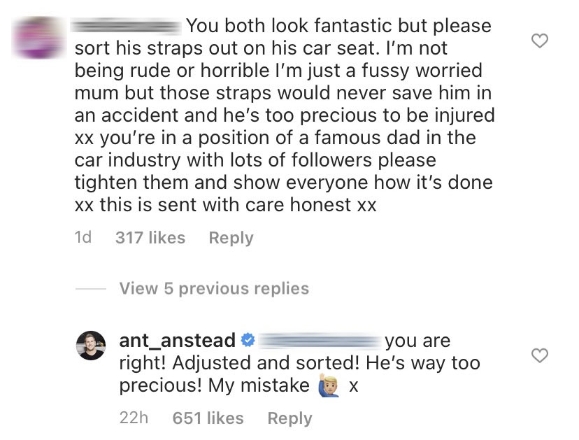 HGTV's Ant Anstead Responds to Concerned Fan Over Son Hudson's Car Seat