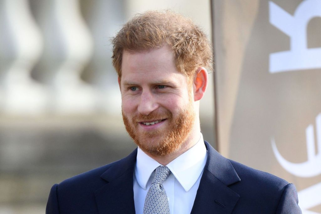 Prince Harry Compares Being a Royal to Being 'in a Zoo' Amid Family Drama