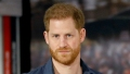 Prince Harry Should Back Away From Being Woke Lecturing Celebrity