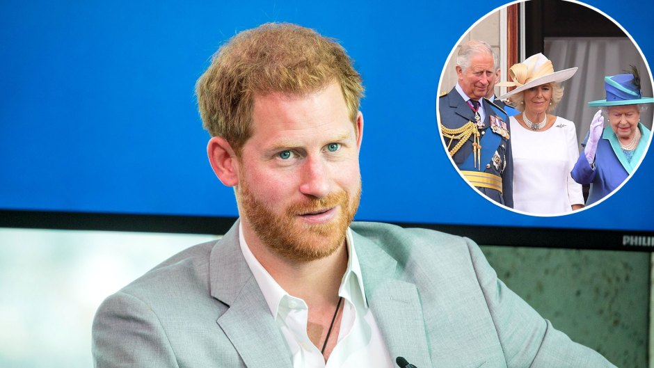 Royal Family Livid After Prince Harry Compared Childhood Living in a Zoo