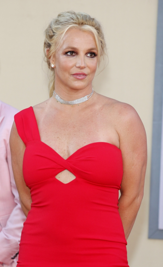 Who is Jodi Montgomery? Britney Spears' Co-Conservator and Care Manager