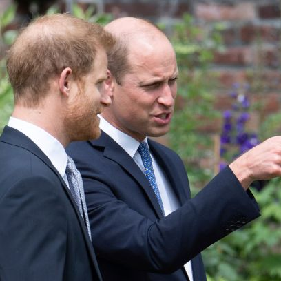 Prince William and Prince Harry Reunite at Princess Diana's Statue Unveiling